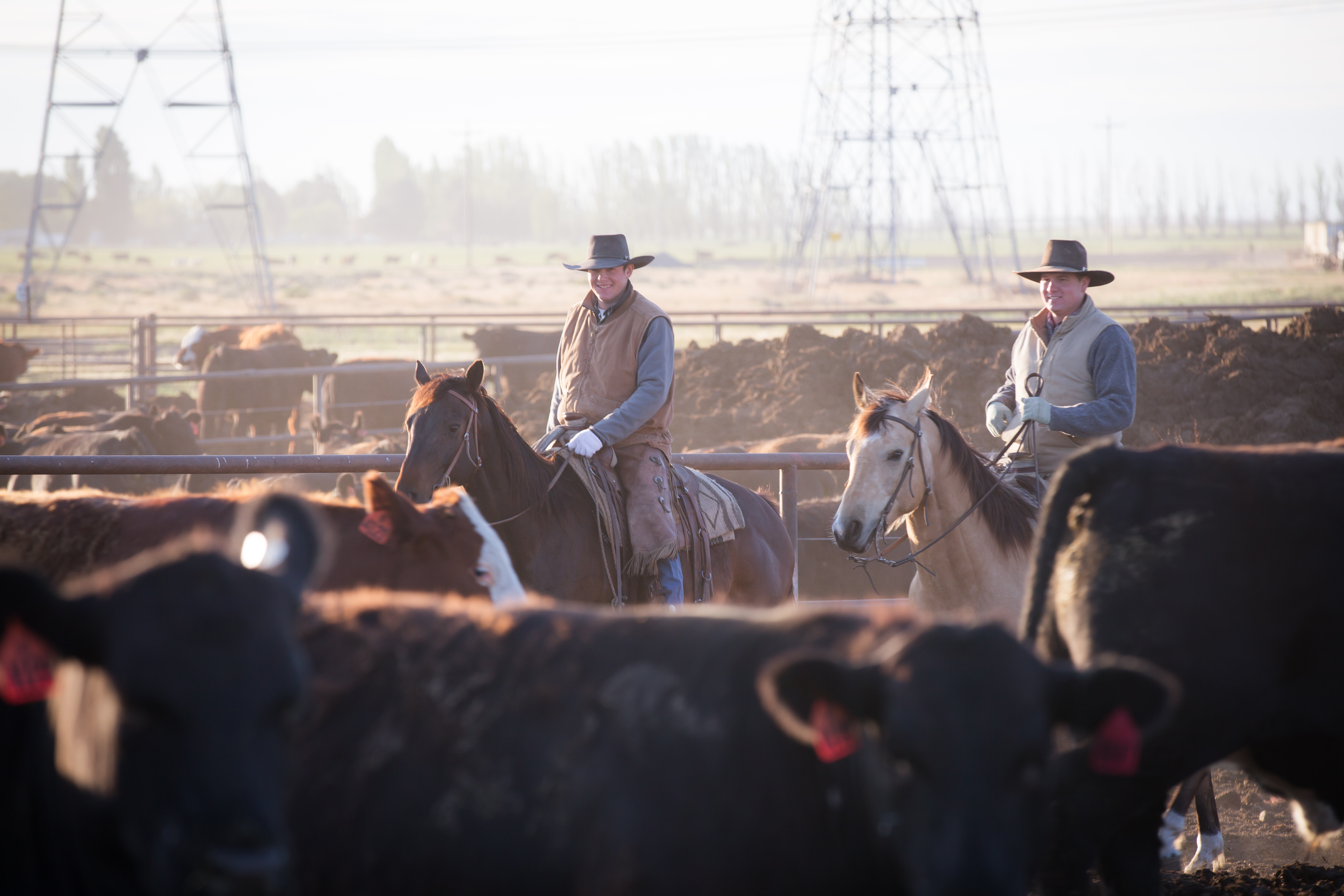 Two cowboys riding pens