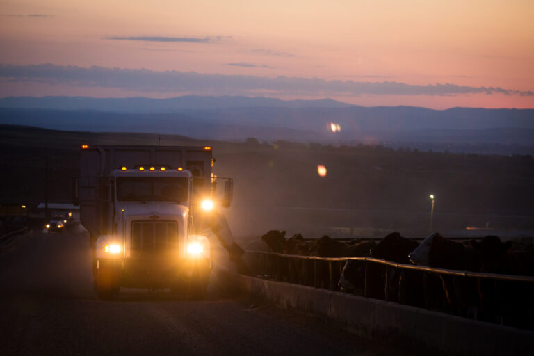 feed truck delivering feed at dusk